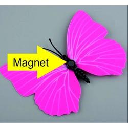 fluture pe opțiuni)